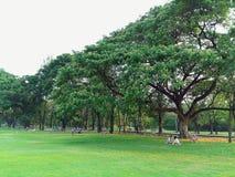 Koppla av med gräsplanträdgården Royaltyfri Bild
