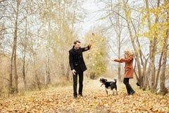 Koppla ihop att gå med hunden i parkera och att krama Hösten går män Royaltyfri Fotografi