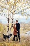 Koppla ihop att gå med hunden i parkera och att krama Hösten går män Fotografering för Bildbyråer