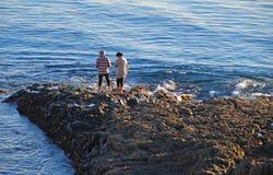 Koppla ihop att se havsliv nära dykarelilla viken, Laguna Beach, Kalifornien Arkivfoto