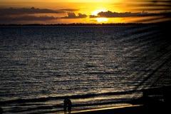 Koppla ihop i solnedgång Royaltyfria Foton