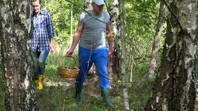 Koppla ihop mannen och kvinnan som går med korgar som är fulla av champinjoner i skog arkivfilmer