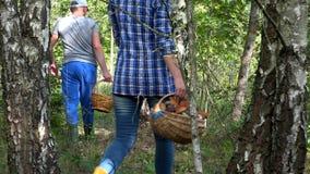 Koppla ihop mannen och kvinnan som väljer champinjoner med korgar i skog lager videofilmer