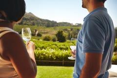 Koppla ihop på vinodlingen med exponeringsglas av vitt vin Arkivfoto