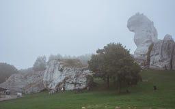 Koppla ihop skyttebröllopfotoet i stenig natur i tung dimma Arkivfoton