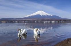 Koppla ihop svanar på Yamanaka sjön med Mt.fuji-bakgrund royaltyfria foton