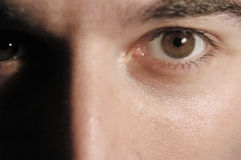 kopplade av ögon royaltyfri fotografi