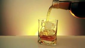 Kopplar av hällande whisky för bartendern med flaskan i det dricka exponeringsglaset med iskuber på varm guld- bakgrund, tid av d arkivfilmer