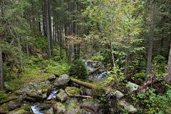 Koprovsky potok 02 Στοκ φωτογραφία με δικαίωμα ελεύθερης χρήσης