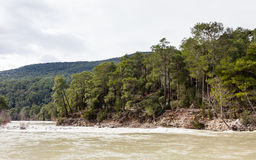 Kopru River Stock Image