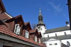Kopuły katedra w Tallinn fotografia royalty free