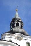 Kopuły katedra w Tallinn obrazy stock