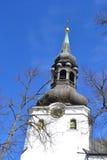 Kopuły katedra w Tallinn fotografia stock