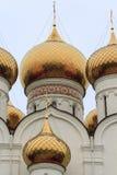 Kopuły wniebowzięcie katedra w Yaroslavl Fotografia Royalty Free