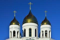 Kopuły katedra Chrystus wybawiciel Kaliningrad, Rosja Obrazy Royalty Free