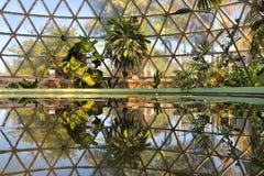 kopuły odbicia tropikalna woda Obraz Stock