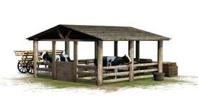 Kor i ladugård på vit bakgrund Arkivfoton