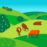 Kor på äng royaltyfri illustrationer