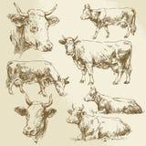 kor tecknad hand stock illustrationer