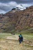 Kora Mt Kailash, паломник Kang Rinpoche тибетских людей Тибет стоковые фотографии rf