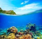 Koraalrif, kleurrijke vissen en zonnige hemel die door schone oc glanzen stock foto's