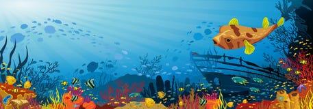 Koraalrif met vissen en kogelvis Stock Foto's
