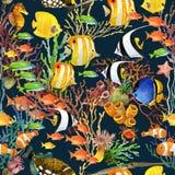 Koraalrif naadloos patroon De onderwater achtergrond van de Wereld royalty-vrije illustratie