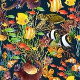 Koraalrif naadloos patroon De onderwater achtergrond van de Wereld vector illustratie