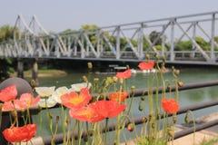Korakuen; Japanischer Garten in Okayama; Japan stockbild