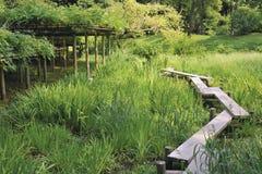 Korakuen park, Tokyo Royalty Free Stock Photo