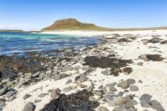Koral plaża na wyspie Skye fotografia royalty free
