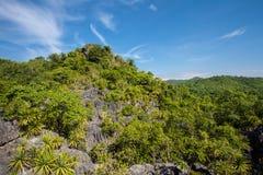 Koral skała Zdjęcie Royalty Free