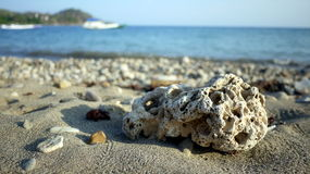 Korala kamień i plaża Obrazy Royalty Free