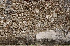 Korala kamień Zdjęcia Stock