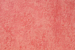 korala menchii tekstury tapeta Zdjęcia Royalty Free