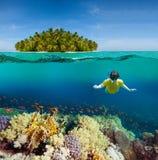 Koralen, duiker en palmeiland Stock Foto