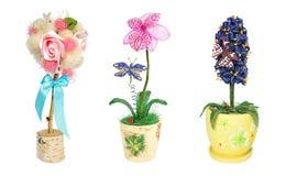 Koralików kwiatu drzewny topiary prezent Obrazy Stock