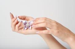 koralika manicure Zdjęcia Stock