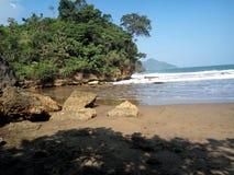 Korall och strand Arkivfoto