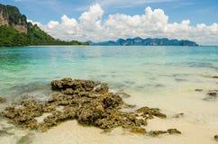 Korall på stranden med mountian bakgrund Royaltyfria Foton