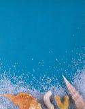 Korallen, Oberteile und Seesalz auf einem blauen Hintergrund Blaues strukturelles Stockbild
