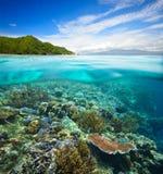 Korallenriff auf Hintergrund des bewölkten Himmels und der Insel Lizenzfreies Stockfoto