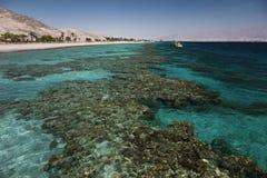 Korallenriff im Golf von Elat stockbilder