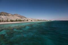 Korallenriff im Golf von Elat stockfotografie