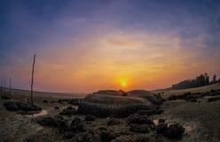 Korallenrote Ansicht während des Sonnenuntergangs stockfoto