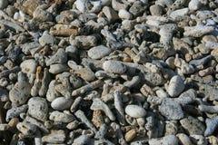 Korallenrote Felsen auf Strand Stockbilder