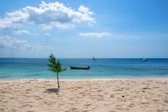 Korallenrote Insel Stockfotografie