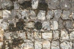 Korallenrote Ziegelsteine des Forts Jaffna - Sri Lanka lizenzfreies stockfoto