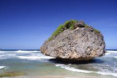 Korallenroter Felsen stockfoto