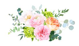 Korallenroter juliet Garten stieg, rosa Ranunculus, Pfingstrose, grüne Hortensie, Eukalyptus lizenzfreie abbildung